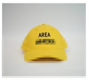 Area Warden Cap